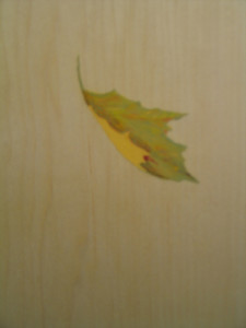 Detail of a painted leaf on the reverse side of the Art Nouveau screen.
